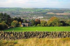 Britische Landschaftlandschaft: Bauernhof und Schafe Stockbild