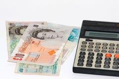 Britische Pounds lizenzfreies stockfoto
