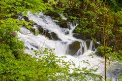 BRITISCHE Wales-Schwalbenwasserfälle Lizenzfreies Stockbild