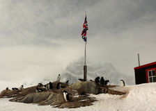 British base in antarctica Royalty Free Stock Photography