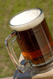 British Beer Royalty Free Stock Images
