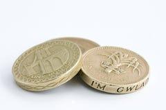 british coins ett pund Royaltyfria Foton