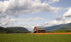 British Columbia Farmland Royalty Free Stock Images