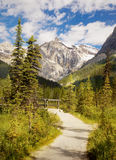 British Columbia, Mountain Trail, Canada, Trekking. Landscape. Mountain trail in Canadian Rockies, Yoho National Park. British Columbia Stock Image