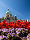 British Columbia Parliament Building in full bloom. Front of the Parliament building in Victoria British Columbia, Canada with the flower gardens in full bloom Royalty Free Stock Images