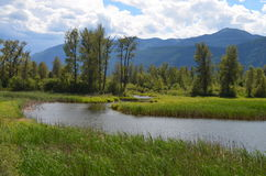 British Columbia Scenery -- Argenta. On the road to Argenta, a former Quaker community at the North Arm of Kootenay Lake in British Columbia Royalty Free Stock Photos