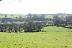 British Countryside and fields. Beautiful British Countryside and fields Royalty Free Stock Images