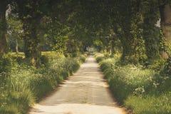 British Countryside Stock Image
