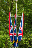 British flags. With green trees as background Royalty Free Stock Image