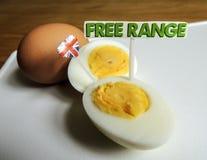 British food: free range, organic, hard boiled eggs Royalty Free Stock Photo