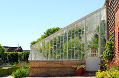 British green house Stock Photos