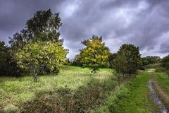 British meadow in autumn. stock image