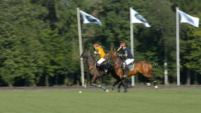 British Polo Day in Moscow stock video footage