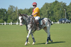 British Polo Day in Moscow Royalty Free Stock Photography