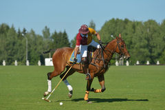 British Polo Day in Moscow Royalty Free Stock Photo
