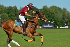 British Polo Day in Moscow Stock Photo