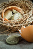 British Pound Coins with Bird Nest Royalty Free Stock Photography