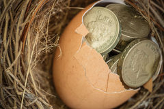 British Pound Coins with Bird Nest Stock Images
