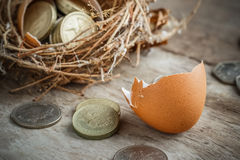 British Pound Coins with Bird Nest Stock Image