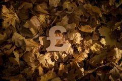 Pound Currency Symbol on Autumn Leaves in Late evening Sun royalty free stock photography