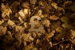 Pound Currency Symbol on Autumn Leaves in Late evening Sun. British Pound Sterling Currency Symbol on Autumn Leaves in Late evening Sun stock photography