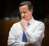 British Prime Minister David Cameron Royalty Free Stock Images