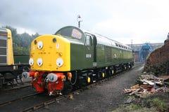 British Railways Diesel Locomotive D213 `Andania` at Barrow Hill Depot Rail Power Event - Barrow Hill, Chesterfield, UK - 24th stock image