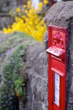 British Red Post Box in Wall. British Red Post Box with Flowers growing behind it in the summer Royalty Free Stock Photos
