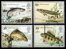 British River Fish Postage Stamps. UNITED KINGDOM - CIRCA 1983: Set of British Used Postage Stamps showing British River Fish, circa 1983 Royalty Free Stock Images