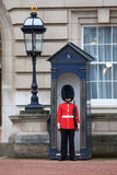 British Royal guard on the entrance to Buckingham Palace Royalty Free Stock Images
