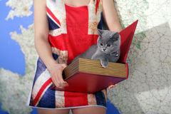 British Shorthair baby. Girl holding a British Shorthair kitten in a book box, map on the background and Union Jack t-shirt Royalty Free Stock Images