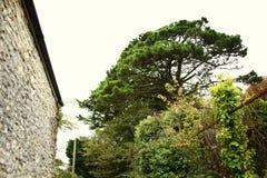 British stone house wall style scenic. British house wall stone atmosphere represent the british urban scenic Royalty Free Stock Photos