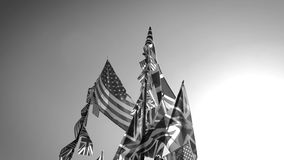 British Union Jack and American flags of the United States waving against blue sky black and white. British Union Jack and American flags of the United States stock footage