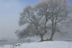 British Winter Stock Image