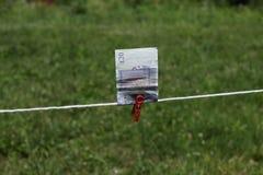 Britse Ponden bankbiljetten met wasknijpers Stock Fotografie