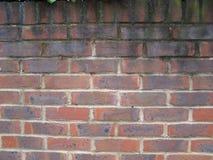 Britse rode bakstenen muur Royalty-vrije Stock Afbeeldingen