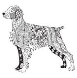 Brittany dog zentangle stylized, vector, illustration, freehand Royalty Free Stock Photos