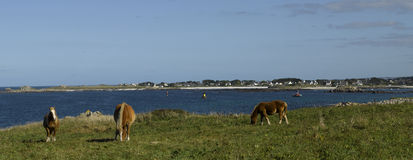 Brittany, Finistere: coastline of Kersaint Royalty Free Stock Images