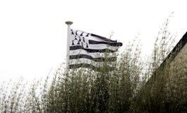 Brittany flagga Arkivbild
