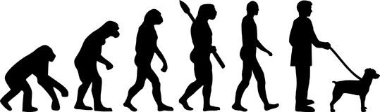 Brittany Spaniel evolution. Development with silhouette Royalty Free Stock Photo