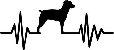 Brittany Spaniel heartbeat. Heartbeat pulse line with Brittany Spaniel dog silhouette Stock Photography