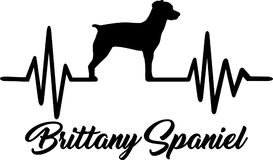 Brittany Spaniel heartbeat word. Heartbeat pulse line with Brittany Spaniel dog silhouette Royalty Free Stock Photography
