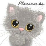 brittisk gullig kattunge stock illustrationer