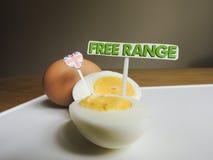 Brittisk mat: frigör område, organiska hårda kokta ägg Royaltyfri Fotografi