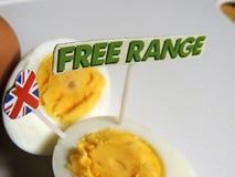 Brittisk mat: frigör område, organiska hårda kokta ägg Royaltyfria Bilder