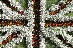 brittiska flaggaväxter Arkivbild