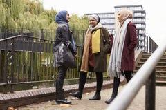 Brittiska muslimska kvinnliga vänner som möter i stads- miljö Royaltyfri Foto