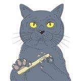 Brittiskt kort hår Cat Hand Draw Vector Skissa illustrationen av funderarekatten Royaltyfri Fotografi