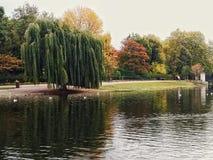 Brittträdgård Royaltyfri Bild