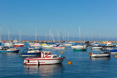 Brixham marina Devon England during the heatwave of Summer 2013 Stock Photo